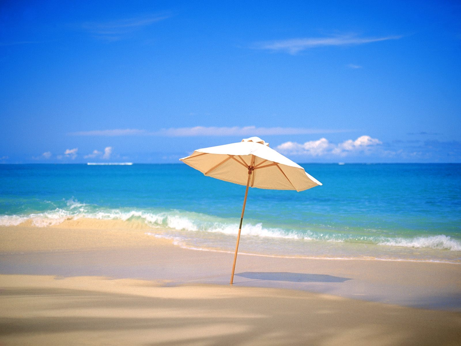 20 tropical backgrounds - photo #44